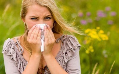Hayfever Remedies