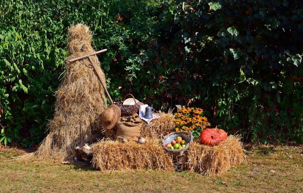 Autumn Equinox Harvest