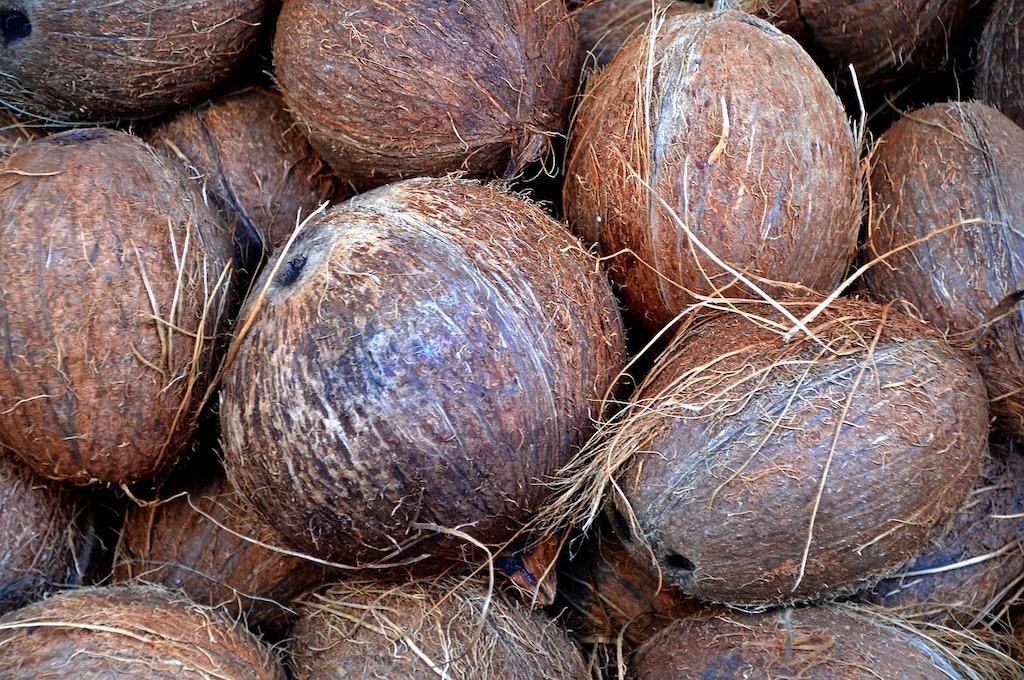 coocnut