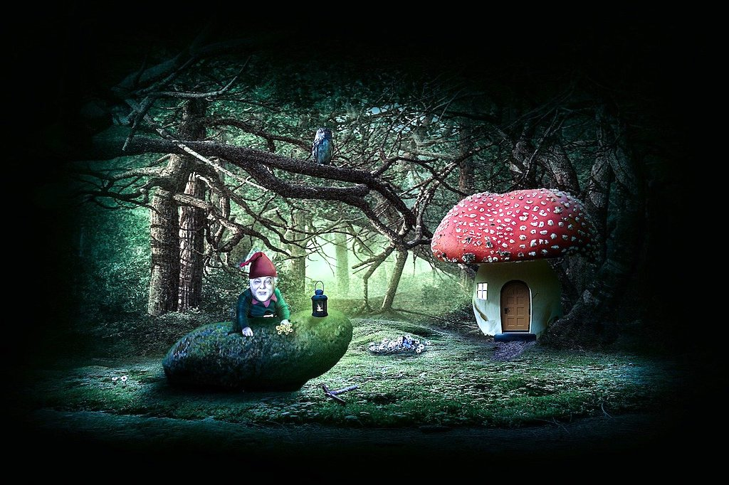gnome and fly agaric house